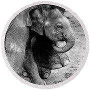 Baby Elephant Security Round Beach Towel