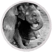 Baby Elephant Security Round Beach Towel