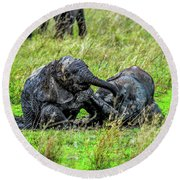 Baby Elephants Rolling In The Mud Round Beach Towel