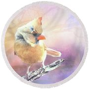 Baby Female Cardinal In Springtime Round Beach Towel by Janette Boyd