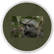 Round Beach Towel featuring the photograph Baby Humming Bird by Lynn Geoffroy