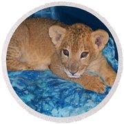 Baby Lion Round Beach Towel