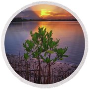 Round Beach Towel featuring the photograph Baby Mangrove Sunset At Indian River State Park by Justin Kelefas