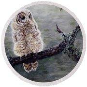 Baby Owl Round Beach Towel