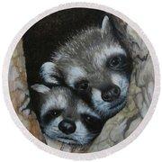 Baby Raccoons Round Beach Towel
