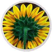 Back Of Sunflower Round Beach Towel