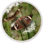 Back To Back Butterflies Round Beach Towel