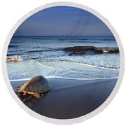 Back To The Sea Round Beach Towel