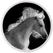 Backlit Arabian Round Beach Towel by Wes and Dotty Weber