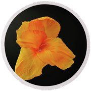 Backlit Orange Petals Round Beach Towel