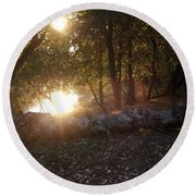 Backlit Trees Round Beach Towel