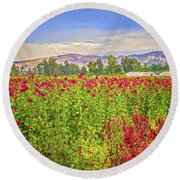 Backroad Beauty In Southern California Round Beach Towel