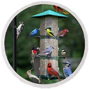 Backyard Bird Feeder Round Beach Towel