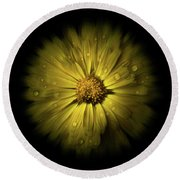Backyard Flowers 10 Color Flow Version Round Beach Towel