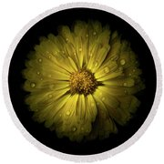 Backyard Flowers 10 Color Version Round Beach Towel