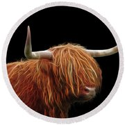 Bad Hair Day - Highland Cow - On Black Round Beach Towel by Gill Billington