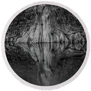 Bald Cypress Reflection In Black And White Round Beach Towel