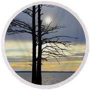 Bald Cypress Silhouette Round Beach Towel