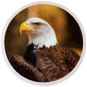 Bald Eagle 2 Round Beach Towel