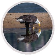 Bald Eagle And Reflection Round Beach Towel