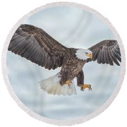 Bald Eagle Blue Sky Round Beach Towel