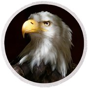 Bald Eagle Closeup Portrait Round Beach Towel
