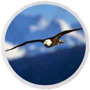 Bald Eagle Haliaeetus Leucocephalus Round Beach Towel