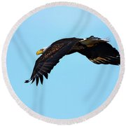 Bald Eagle Horizons Round Beach Towel