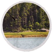 Round Beach Towel featuring the photograph Bald Eagle In Flight by Trace Kittrell