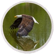 Bald Eagle In Low Flight Over A Lake Round Beach Towel