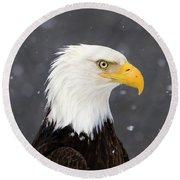 Bald Eagle Intensity Round Beach Towel
