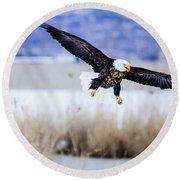Bald Eagle Landing Round Beach Towel