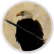 Round Beach Towel featuring the photograph Bald Eagle by Lori Seaman