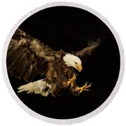 Bald Eagle On Black Round Beach Towel