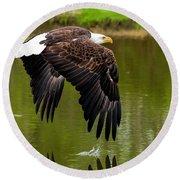 Bald Eagle Over A Pond Round Beach Towel