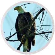 Bald Eagle Over The Root River Round Beach Towel