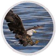 Bald Eagle Strike Round Beach Towel