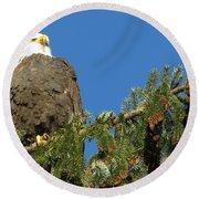 Bald Eagle Sunbathing Round Beach Towel
