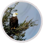 Bald Eagle - Taking A Break Round Beach Towel