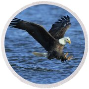 Round Beach Towel featuring the photograph Bald Eagle Talons Up by Coby Cooper