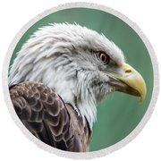 Bald Eagle - Vermont Round Beach Towel