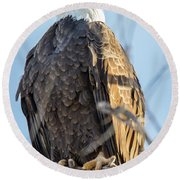 Bald Eagle Vertical Profile Round Beach Towel