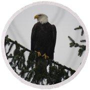Bald Eagle Watching Round Beach Towel