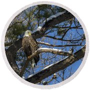 Bald Eagle Watching Her Domain Round Beach Towel