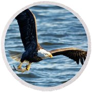 Bald Eagle With Fish Round Beach Towel
