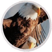 Bald Eagles Round Beach Towel