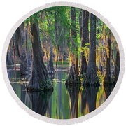 Baldcypress Trees, Louisiana Round Beach Towel