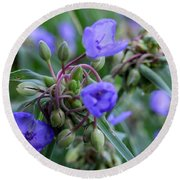 Round Beach Towel featuring the photograph Balmy Blue by Michiale Schneider