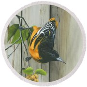 Round Beach Towel featuring the painting Baltimore Oriole by Mike Brown