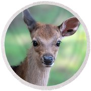 Bambi Round Beach Towel